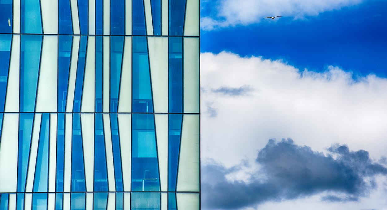 UoA Building - Seagul